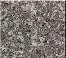 Chinese Popular Granite G664 Tiles,Slab