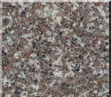 Chinese Popular Granite G664 Tiles,Slab