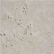 Coral Stone Tiles, Philippines White Coral Stone