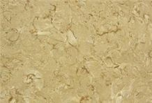 Shells Reef Beige Limestone Tile