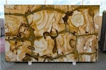 Palomino Quartzite Slabs, Stone Wood Quartzite