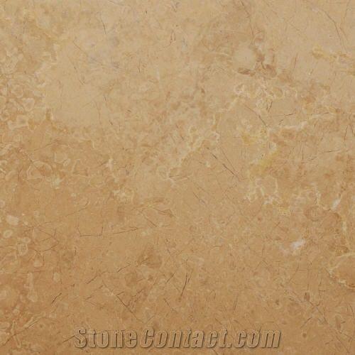 Dark Beige Fossil Turkey Beige Marble Slabs Tiles