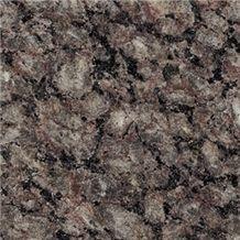 Brazil Zeta Brown Granite Slab(own Factory)