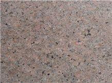 Polished Desert Pearl Granite Tile