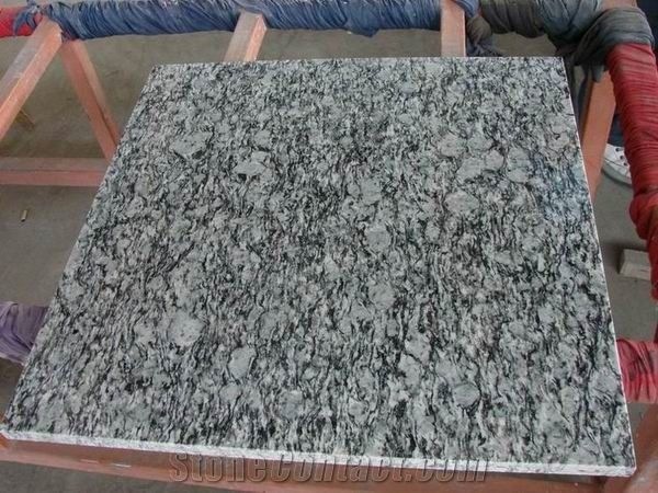 Polished Oyster Pearl Granite Tile Own Factory From China