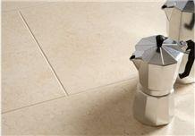 Negev Fossil Limestone Floor Pattern