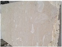 /products-238531/guatemala-coral-stone-sawn-cut-slabs