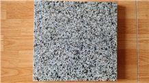 Vietnam Light Green Granite Slabs & Tiles
