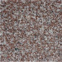 Misty Brown Granite G664 Slabs & Tiles