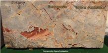 Sarrancolin Opera Fantastico Marble Slabs