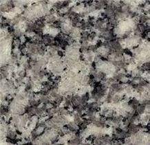 Gris Perla Salto Granite Slabs, Argentina Grey Granite