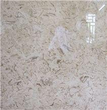 Fossil Beige Marble Slabs & Tiles, Iran Fossil Beige Marble