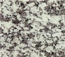 Gran Perla Granite Tile, Grey Granite Slab