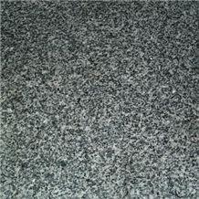 Sesame Black G654 (Padang Dark), G654 Black Granite Tiles