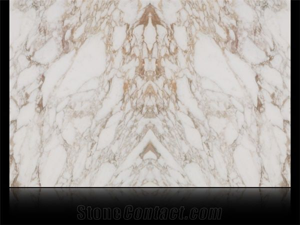Calacatta Vagli Marble Book Matched Italy White Marble