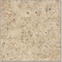 Belgian Truffles Limestone Tiles