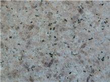Giallo Champagn Granite, China Grey Granite Slabs & Tiles