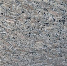 Fox Brown Granite Tiles, India Brown Granite