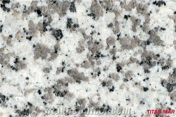 Pauline Grey Granite Tiles China White