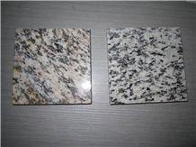 Polished Tiger Skin White Granite Tile