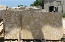 Golden Coral Stone Slabs, Dominican Republic Golden Coral Stone