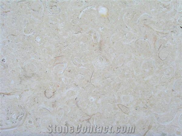 Coquina Shellstone Mexican Coral Stone Coquina Shellstone Tiles