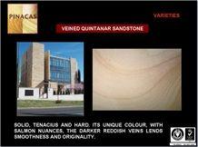 Veined Quintanar Beige Sandstone Facade