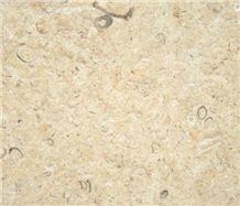 Jerusalem Shells Limestone Slabs & Tiles, Beige Polished Limestone Floor Tiles, Wall Tiles