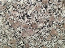 PC Violet, Viet Nam Green Granite Slabs & Tiles