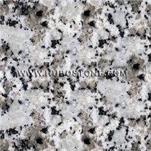 Bala Flower Granite Slabs, Bala Flower Granite Til