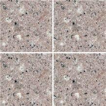 G606 Quanzhou White Granite Tile, China Pink Granite