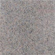 Gra Bohus Aevja Granite Tiles, Bohus Grey Granite Tiles
