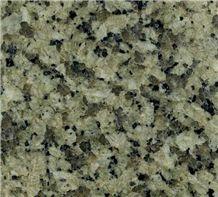 Jiangxi Green Flooring/Walling Chinese Green Granite Tiles & Slabs