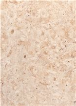 Bf1400 Honed / Hebron Bone Limestone Tiles and Slabs from Holyland
