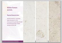 White Fossus 4200l Limestone Polished