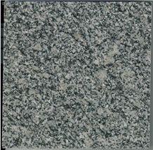 Cheap Grey Pearl Grey ,Bianco Sardo Grey Granite/ Baoshan Grey Granite Tiles
