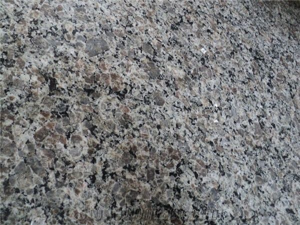 New Caledonia Granite Slabs Tiles