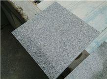 New Quarry Of G603 Granite Polished Tiles & Slabs