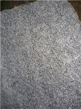 Green Pine Leaf Slabs & Tiles, China Green Granite