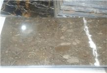 Sea Life Grey Fossil Brown - Double Polished Slabs & Tiles, Oceanic Marble Slabs & Tiles