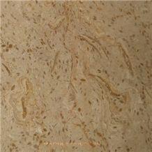 Fossil Beige Marble Tile & Stairs, Pakistan Beige Marble