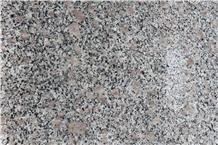 Cheapest G383 Grey Granite Slabs & Tiles