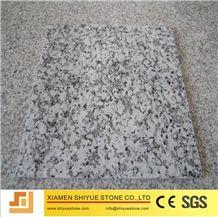 China G439 Polished Granite Tile,Bianco Sardo,Ocean White,Light Grey Granite,Big Bala White Flower Granite,Tiles & Slabs,Floor Covering Tiles/Wall Covering Tiles/Paving Stone/Wall Stone/Bulding Stone