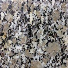 Golden Pearl Granite Slabs & Tiles, China Yellow Granite