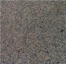New Karamori Gold Granite Slabs & Tiles, China Yellow Granite