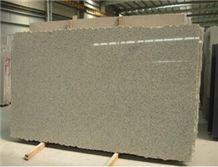 G623 Granite Slab, China Grey Granite