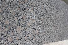 G383 Pearl Flower Granite Slab, Slabs
