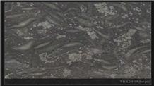 Ss Active Gray Marble Slabs & Tiles, Indonesia Grey Marble