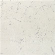 Wellest Wmx207 Arabescato Corchia White Engineered Marble Tile and Slab