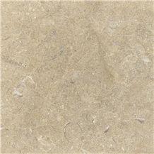 Jerusalem Gold A55 Shell Limestone Slabs & Tiles